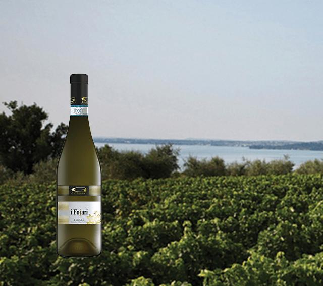 Azienda vitivinicola Gasparini consorzio tutela Lugana